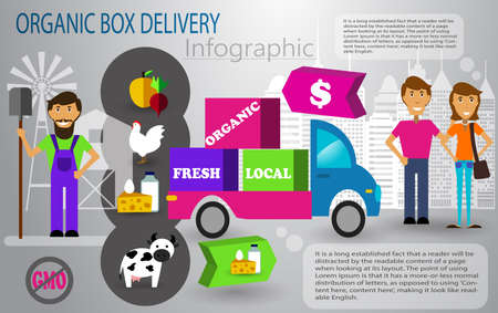 Organic food box delivery infographic concept Vectores