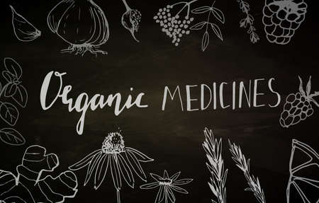 Organic medicines - medicinal plants collection. Vector hand drawn isolated objects on white Ilustração