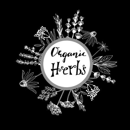 Organic herbs collection icon.