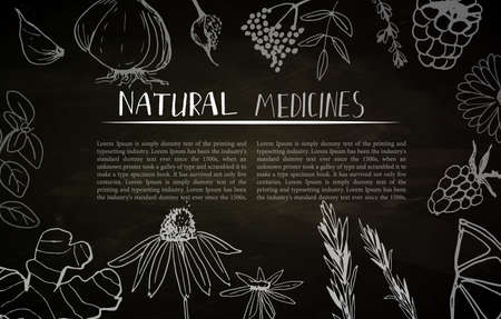 Herbs and medicinal plants collection. Vector hand drawn isolated objects on white background. Ilustracja