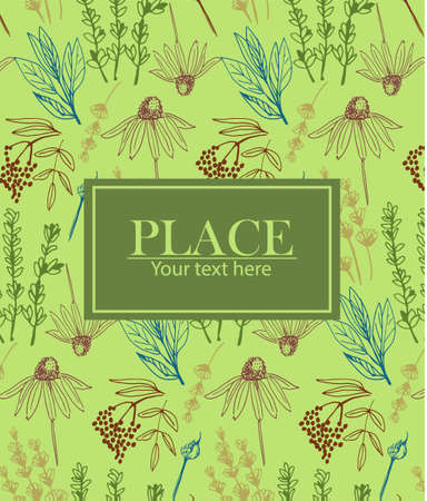 Herbs and medicinal plants collection background