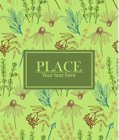 Herbes et plantes médicinales collection de fond Banque d'images - 98514878