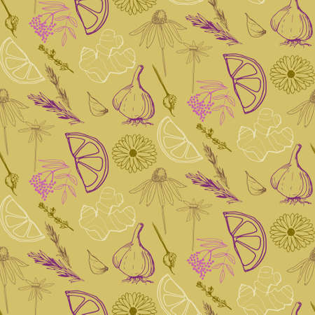 Herbs and medicinal plants seamless pattern 版權商用圖片 - 98514882
