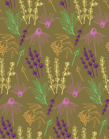 Herbs and medicinal plants collection seamless pattern. 向量圖像