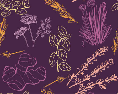 Herbs and medicinal plants seamless pattern illustration.