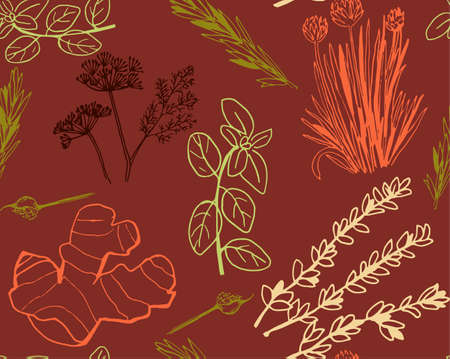 Herbs and medicinal plants seamless pattern Vector hand drawn objects