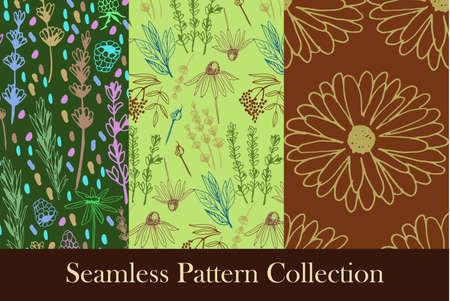 Herbs and medicinal plants seamless patterns Vector illustration.