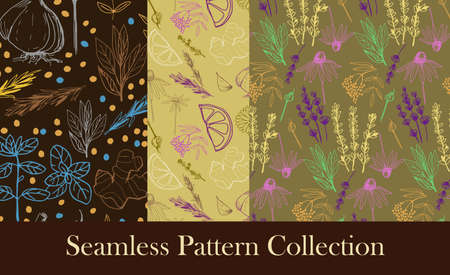 Herbs and medicinal plants seamless patterns