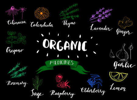 Herbs and medicinal plants collection.