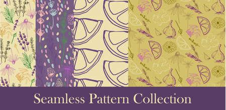Herbes et plantes médicinales seamless patterns Banque d'images - 98585860