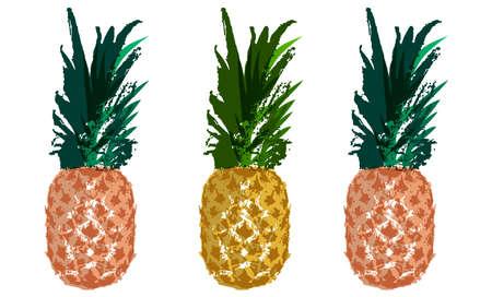 Vector Single Sketch of Pineapple Illustration.