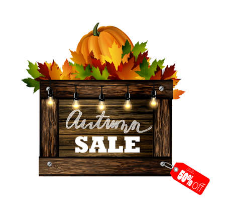Autumn sale. Autumn leaves are drawn with chalk on a black chalkboard in wooden frame. Sketch, design elements. Vector.