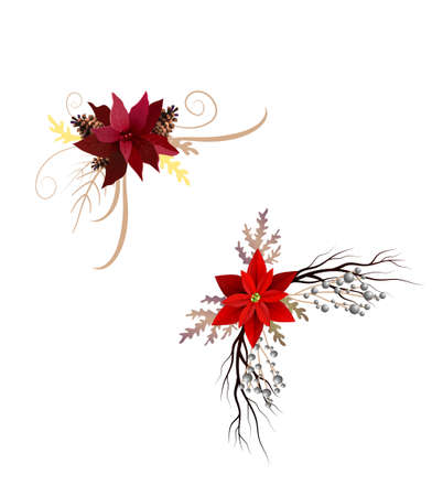 Flowers vector for christmas designs