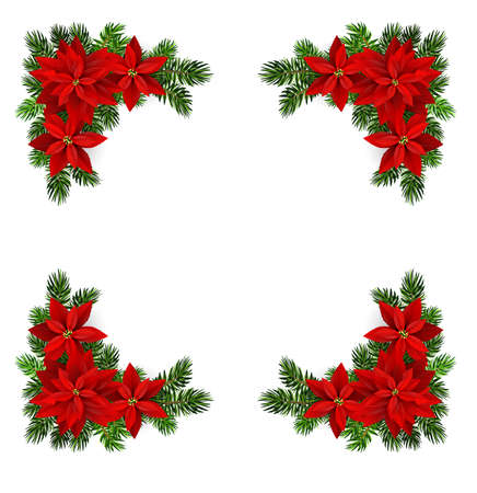 Vector. Christmas decoration with evergreen and poinsettia frame for greetings