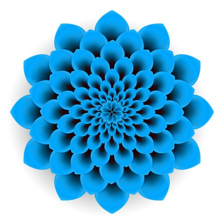 Background beautiful blue flower on white background. photo