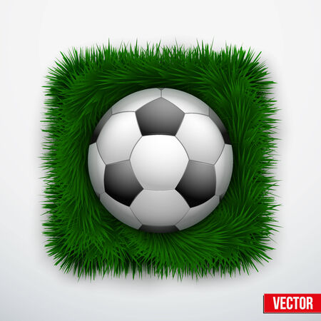 Icon soccer leather ball in green grass. Vector Illustration. Vector
