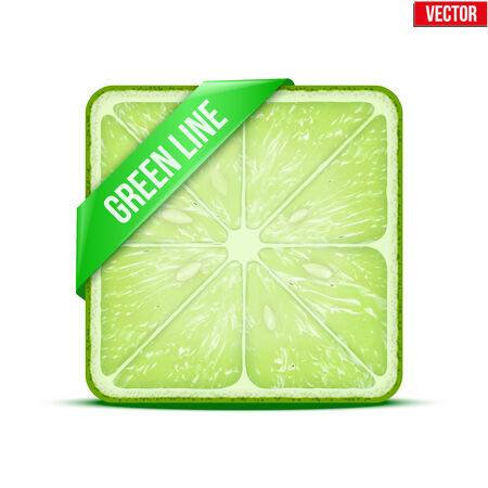 Square slice of lime with green ribbon. Juicy fruit icon. Isolated on white background. Vector Illustration. Vector