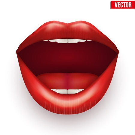 lip gloss: Womans mouth with open lips. Vector Illustration. Isolated on white background.