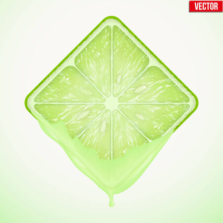 Square slice of lime with fresh juice. Fruit icon. Isolated on white background. Vector Illustration. Illustration
