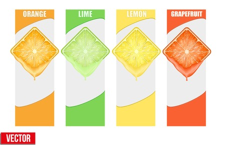 Set of Vertical Banner Square slice juicy fruits with space for text  Isolated on white background  Vector Illustration  Vector