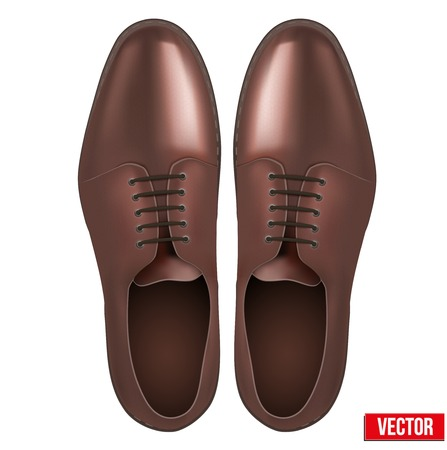 foot gear: Male fashion classic brown shoes  Vector illustration on white background