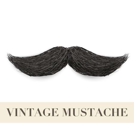 burly: Realistic Vintage Black curly mustache  Vector Illustration isolated on a white background