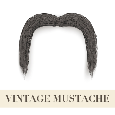 drooping: Realistic Vintage Black drooping mustache  Vector Illustration isolated on a white background