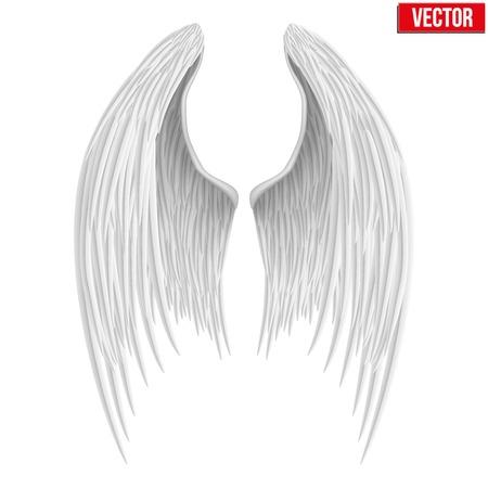 흰색 접힌 천사 날개. 벡터 일러스트 레이 션 흰색 배경에 고립.