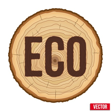 cruz de madera: Secci�n transversal de madera de tronco de �rbol con la inscripci�n quemada ECO. Ilustraci�n del vector aislado en el fondo blanco