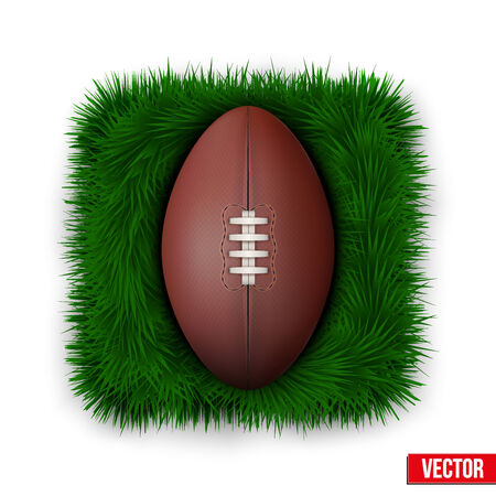 leather ball: Icon Classic rugby leather ball on green grass. Vector Illustration.