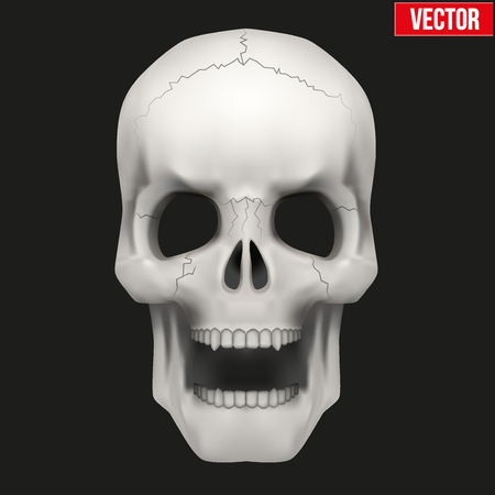 Vector Human skull with open mouth. Illustration isolated on background Vector