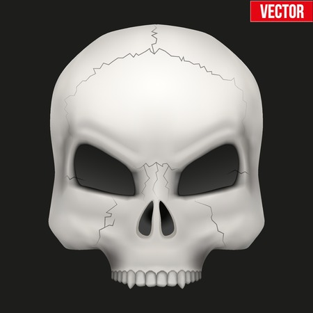 Vector Creative Human skull. Illustration isolated on background Vector