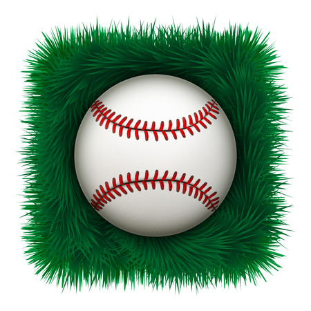 leather ball: Baseball leather ball on green grass