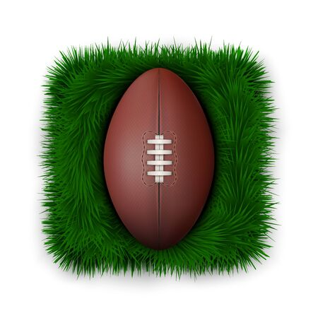 leather ball: Classic rugby leather ball on green grass. Stock Photo