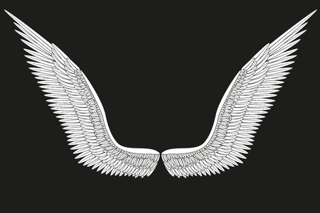 mid air: Sketch open white angel wings Illustration isolated on black background. Stock Photo