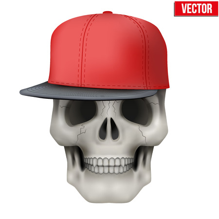 rap music: Vector Human skull with rap cap on head. Illustration isolated on background Illustration