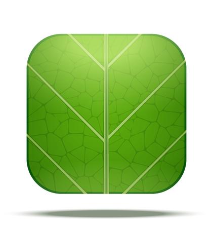 vegetate: Green Leaf Square Icon. Vector Illustration isolated on white background. Illustration