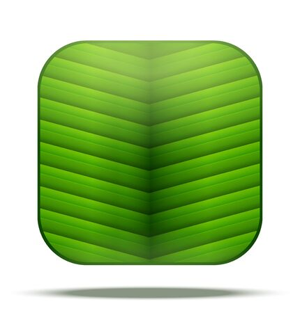 vegetate: Green Leaf Square Icon. Vector Illustration isolated on white background. Illustration