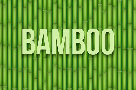 Green Bamboo background. Vector Illustration isolated on white background.