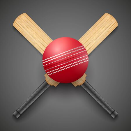 criket: illustration of cricket leather ball and wooden bats.