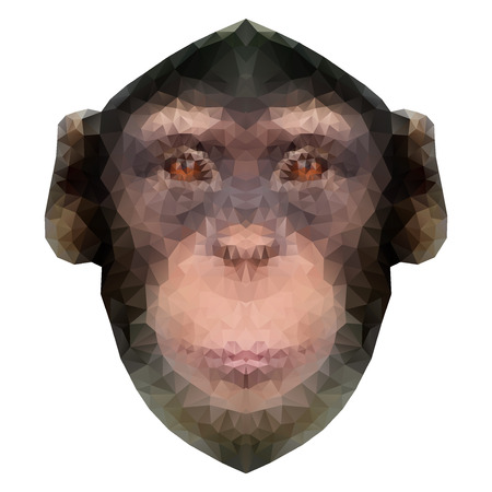 Head of a monkey in triangle style. Symbol of new 2016 year. Triangulation trend Vector Illustration isolated on white background