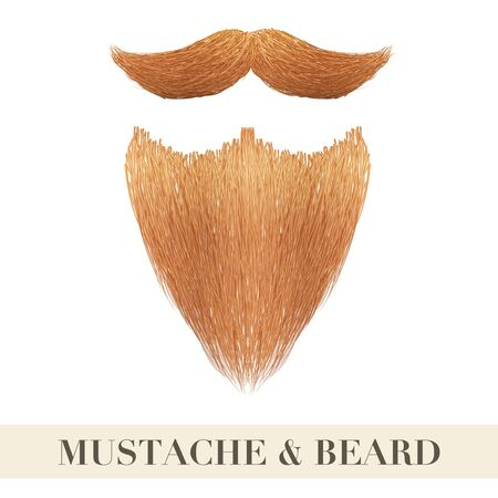 white beard: Realistic Vintage ginger beard with curly mustache.  Illustration isolated on a white background