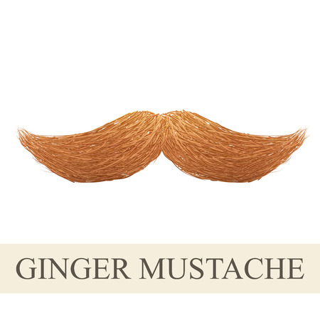 Realistic Vintage ginger curly mustache. Illustration isolated on a white background Stock Photo