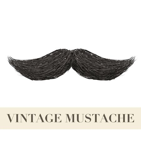 burly: Realistic Vintage Black curly mustache. Illustration isolated on a white background Stock Photo