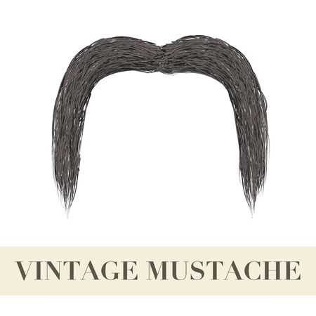 Realistic Vintage Black drooping mustache. Illustration isolated on a white background Stock Photo