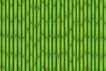 緑竹の背景。白い背景で隔離の図。