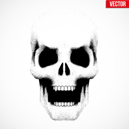 pensil: Vector Human skull with open mouth in sketch style. Illustration isolated on background
