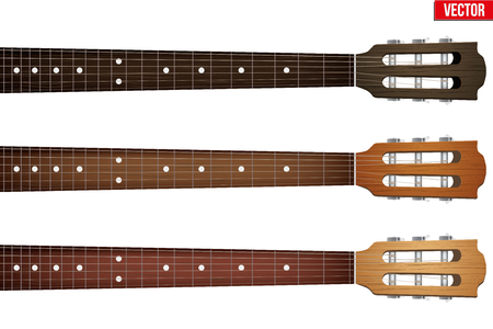 fretboard: Set of Classic Guitars neck fretboard and headstock. Vector Illustration isolated on white background.