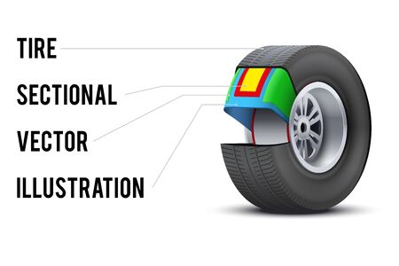 sectional: Technical illustration of Car tire with layers sectional. Demonstration of the structure. Illustration isolated on white background.
