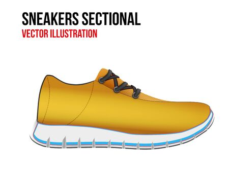 sectional: Technical illustration of sport shoes sneakers sectional. Demonstration of the structure of the material. Vector Illustration isolated on white background